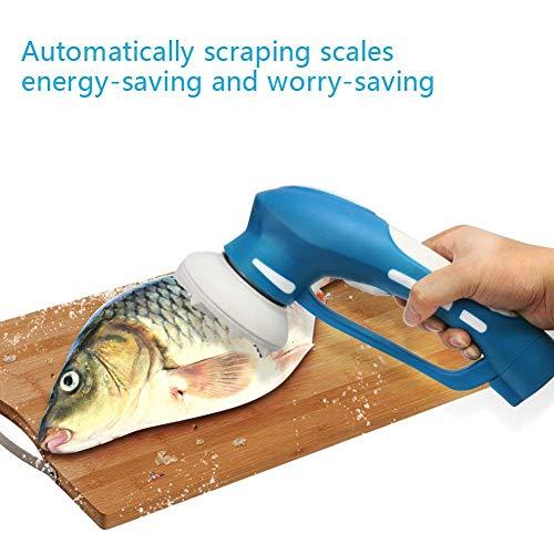 EVERTOP Fish-Scaler, elektrische Schnell entfernen Fischschuppen Portable Wireless Scraper Fischentschupper mit Schuppenauffangschalefür Küche, Restaurant, Seafood Market Factory, blau
