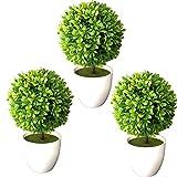 TLC 3 x Buchsbaum getopft (EDEL LINGUSTER) 25 cm, Buchsbaumkugel künstlich wie echt