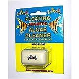 Fish R Fun Acryl Schwimmender Algenmagnet, Mini