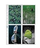 Favorit 100460147 Busta a Foratura Porta Fotografie con 8 Tasche Formato 10X15 cm, Confezione da 10 Pz.