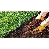 Creative Farmer Vermi Compost for Rose