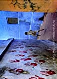 Steve McCurry: Der unverwehrte Augenblick: Dreißig Jahre Fotografie von Steve McCurry -