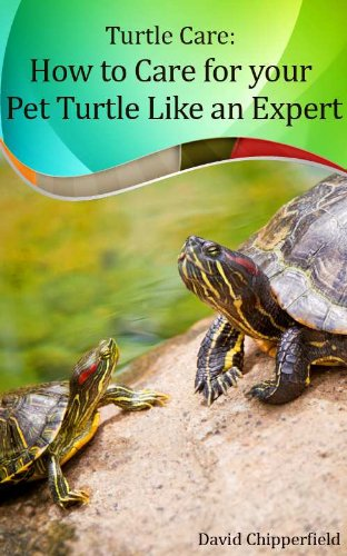 Turtle Care: How to Care for Pet Turtles Like an Expert. (Aquarium and Turtle Mastery Book 5) (English Edition) -