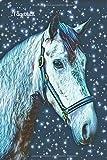 Tagebuch: Mädchen Pferd Pony Notizen