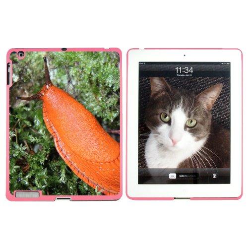 grand-orange-limace-escargot-mollusk-rigide-clipser-coque-de-protection-pour-apple-ipad-234-rose