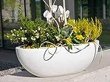 Pflanzschale OVALE 65x31x25 aus Fiberglas in perlweiß, Blumenschale, Dekoschale