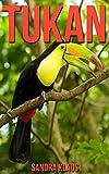 Kinderbuch: Erstaunliche Fakten & Bilder über Tukan