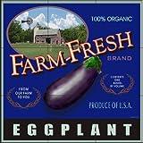 Keramik Fliesen - LS-Farm Fresh Aubergine - von Lori Schory - Küche Aufkantung / Bad Dusche