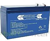 RPower LiFePO4 Lithium-Akku: 12V 15Ah 192Wh