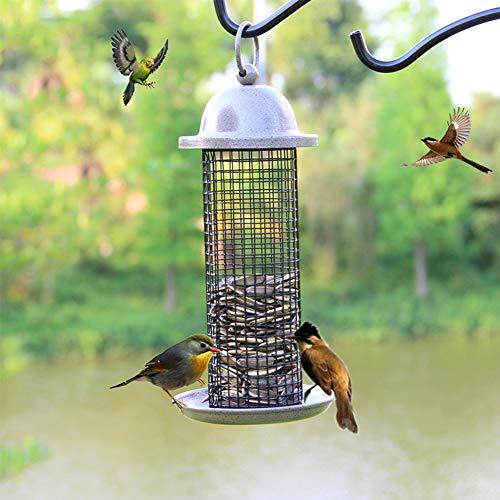Blue Jay Feeder (Cacoffay Mesh Metall Tube Hängend Vogel Feeder für Kardinal, Blue Jay und Vogel Vielfalt - Eichhörnchen Beweis Wann Platziert Hoch - mit 360 ° Vogelfutter Export)