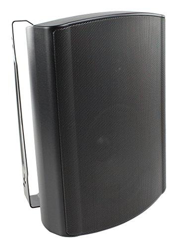 Visaton 50318 Lautsprecher WB 16, 100V+8 Ohm schwarz