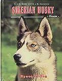 Siberian Husky - Heute (Das besondere Hundebuch)