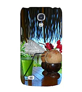 PrintVisa Relaxation 3D Hard Polycarbonate Designer Back Case Cover for Samsung Galaxy S4 i9500 :: Samsung I9500 Galaxy S4 :: Samsung I9505 Galaxy S4 :: Samsung Galaxy S4 Value Edition I9515 i9505G