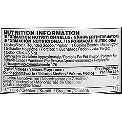 Optimum Nutrition Creatine, sin Sabor - 634 g