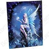 Fantastisches Anne Stokes Design - Star Gazer – einer Gotische Fee auf Stein - Leinwand Bild auf Bild-Wand-Plakette / Wand Kunst