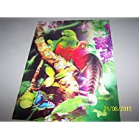 Parrots su ramo, immagine A pappagallo lenticolare 3D Ready To Frame Wall Art, 34,5 x 24,5 cm - Parrot Wall Plaque