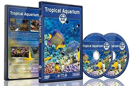 Preisvergleich Produktbild Aquarium DVD - Tropical Aquarium XXL - 2 Hours of Colorful Corals & Fishes