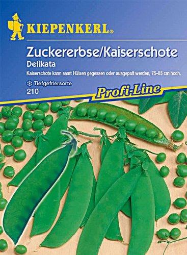 Samen Erbse (Sperli Gemüsesamen Zuckererbsen Delikata, grün)