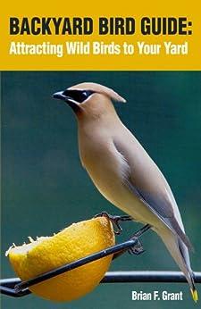 Backyard Bird Guide: Attracting Wild Birds to Your Yard ...