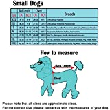Hundeweihnachtspulli Merry X-Mas rot von Doggydolly - 3