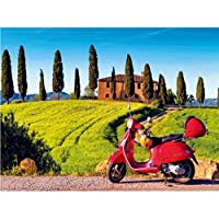 ycmjh DIY frameless painting with digital acrylic paint for motorcycles, home decoration for room 40x50cm