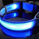 Hemore LED-Hundehalsband für die Nacht, blinkend, beleuchtet mit Verstellbarer Schnalle, Blau