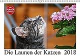 Die Launen der Katzen 2018 (Wandkalender 2018 DIN A3 quer): Die schönsten Momente aus dem Leben der Hauskatzen. (Geburtstagskalender, 14 Seiten ) (CALVENDO Tiere) [Kalender] [Apr 01, 2017] Kropf, Anna