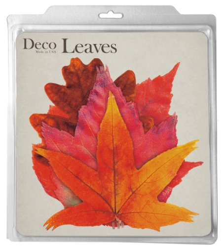 euroquest-imports-fall-deco-parchment-leaves-package-of-20