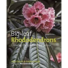 Big Leaf Rhododendrons: Growing the Giants of the Genus