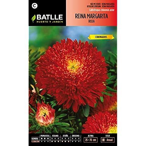Semillas Batlle 092960BOLS - Reina Margarita Flor Crisantemo Roja