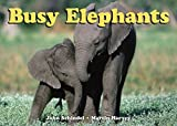 Busy Elephants (A Busy Book)