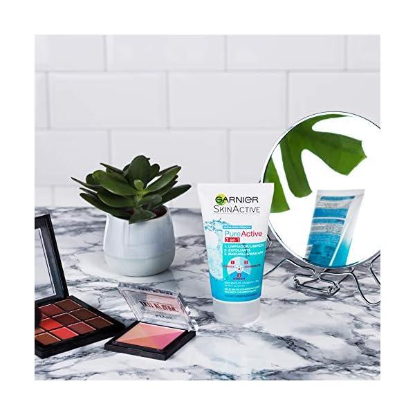 Garnier Skin Active Pure Exfocepillo para Pieles Grasas con Tendencia a Sufrir Imperfecciones, Fórmula 2% Ácido Salicílico – 100 ml