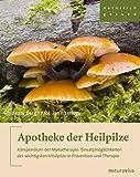 Apotheke der Heilpilze: Kompendium der Mykotherapie: Einsatzmöglichkeiten der wichtigsten Vitalpilze in Prävention und Therapie