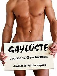GAYLÜSTE: erotische Geschichten