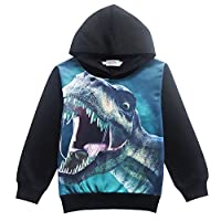 EULLA Boys Dinosaur Pullover Hoodies Cartoon Pattern Kids Long Sleeves Outfit Tops Age 4-8 Years