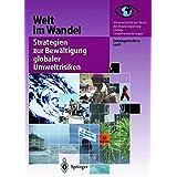 Welt im Wandel: Strategien Zur Bewältigung Globaler Umweltrisiken: Jahresgutachten 1998 (German Edition)