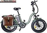 Tecnobike Shop Bici Bicicletta Elettrica Pieghevole Folding Vitale 500W 48V Telaio Curvo Fat Bike eBike (Verde)