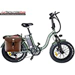 Tecnobike-Shop-Bici-Bicicletta-Elettrica-Pieghevole-Folding-Vitale-250W-36V-Telaio-Curvo-Fat-Bike-eBike