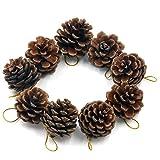 TRIXES Paquete de 9 Decorativas Piñas Colgantes para Árboles de Navidad
