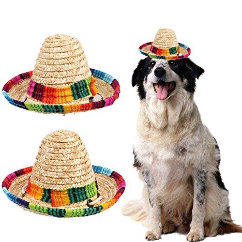 Bduco Verstellbar Stroh Gewebt Pet Hat für Hunde Katze Fashion Kostüm Supplies, 1, As Shows in The Picture(2 Options) (2 Kostüme In 1)
