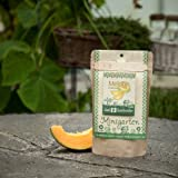 Minigarten - Melone - Komplettes Pflanzset für dieses essbare Obstpflanze
