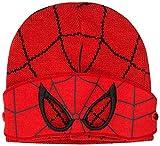 Disney- Cappello Bimbo Inverno Sciarpa Guanti Spiderman Marvel Avengers Paw Patrol Frozen Cappelli Bimba Invernali (SpidermanCappello)