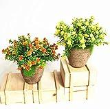 Yocome 2 Stück Künstliche Fake Faux Mini Kunststoff Grün Gras Blume von Pflanzen mit runden Tontöpfen für Wohnkultur Büro außerhalb Hochzeit Garten Party DIY Dekoration, gelb und rot