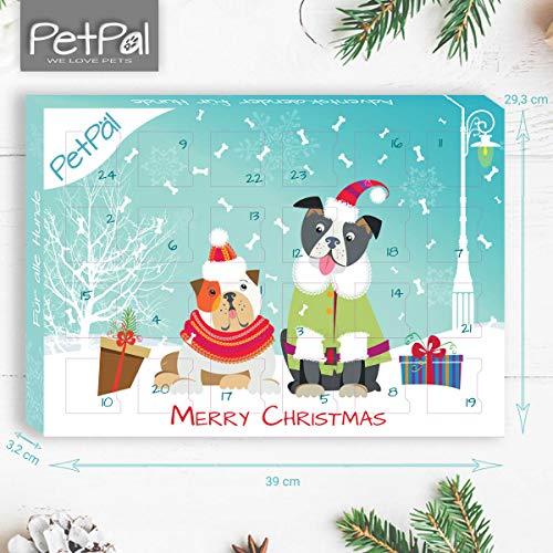 Zoom IMG-3 petp l advent calendar