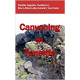 Canyoning in Tenerife (Spanish Edition)