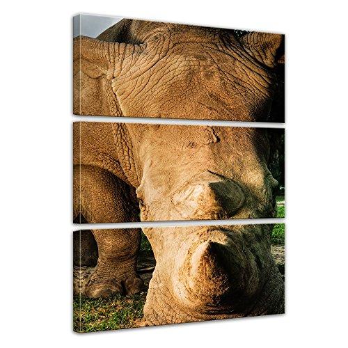 Wandbild Nashorn und Giraffe - 60x90 cm Bilder als Leinwanddruck Fotoleinwand Tierbild exotische Tiere - afrikanische Tiere im Sonnenuntergang
