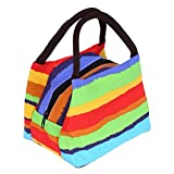 Rrimin Printing Stripe Colorful Lunch Box Bag Outdoor Travel Picnic Tote Storage Bags (Rainbow Strip)