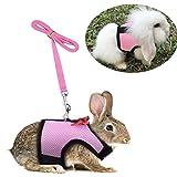 Hypeety Hundegeschirr für Kaninchen, Kaninchen, Kätzchen, kein Ziehen, stilvolles Weste, für kleine Tiere, verstellbar, weich, atmungsaktiv, Set