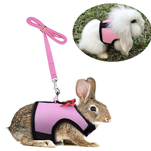 Hypeety Kaninchen Bunny Kätzchen Geschirr Keine Pull Cat Leine Stilvolle Weste Geschirr für Kleine Animal Verstellbar Soft Atmungsaktives Walking Geschirr Set