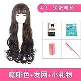WIAGHUAS Female Perücke Langes lockiges Haar Liu Hai Hair Fluffy Realistische große Wave Locken Perücke,braun